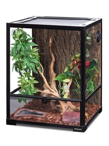 DIY Reptile Enclosure Plans
