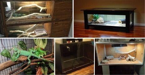 DIY-Reptile-Enclosure-Plans