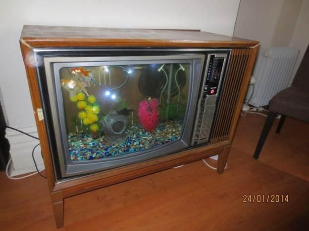 10. DIY TV Fish Tank