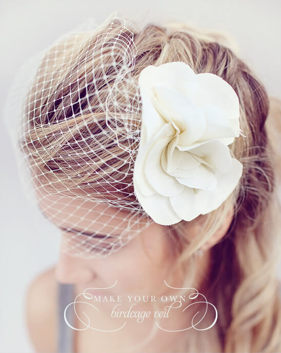11. Do It Yourself Birdcage Veil