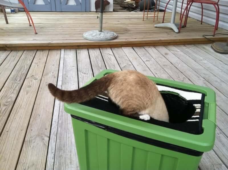 20. Custom Cat Litter Box DIY
