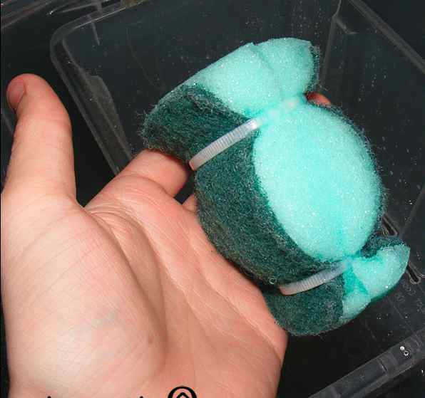 3. How To Make A DIY Sponge Filter