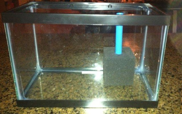 8. How To Make A Sponge Filter For Your Aquarium