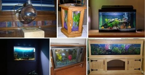 DIY Aquarium Projects