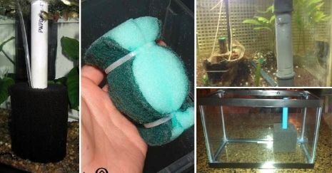 DIY Sponge Filter Ideas