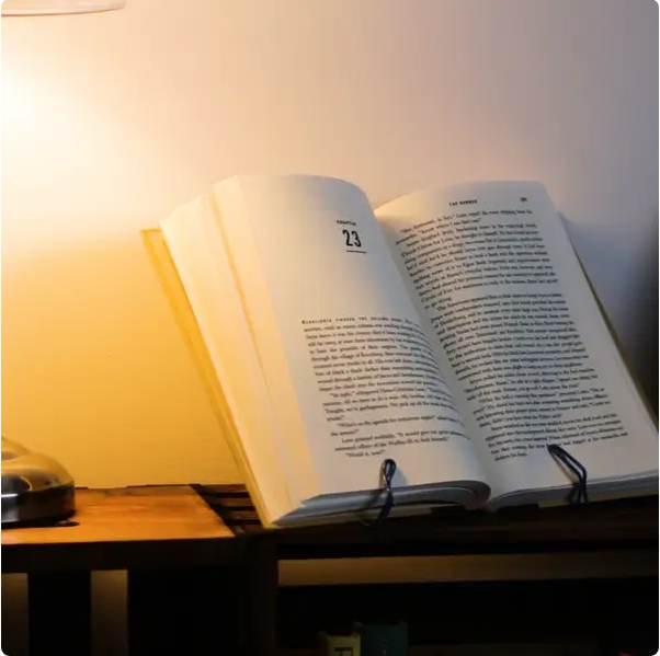 10. Free Hanger Bookstand