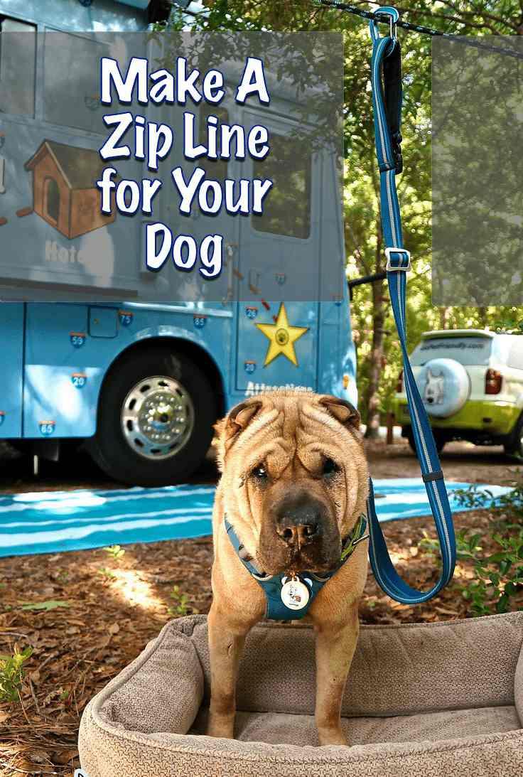 10. Zipline for Pet Dog