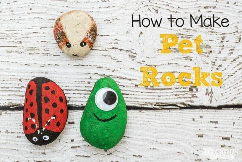 3. How To Make Pet Rocks