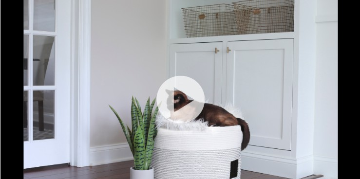 4. How To Make A DIY Cat Bed