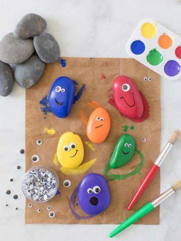 DIY Pet Rocks Ideas