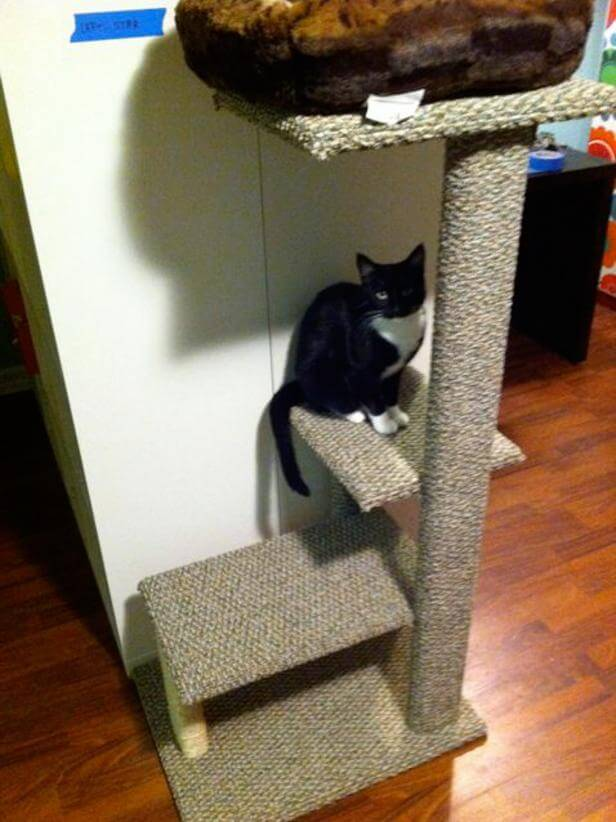1. How To Build A DIY Cat Tree