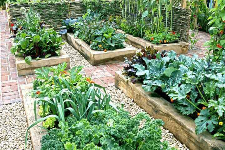 10. How To Build A Raised Garden Bed
