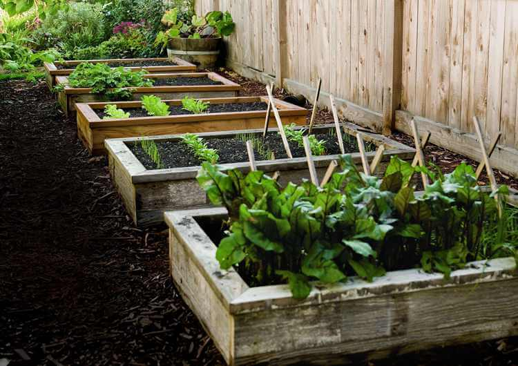 11. How To Build A Raised Garden Bed