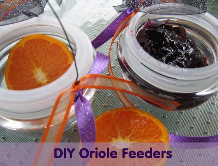 15. How To Build A DIY Oriole Feeder