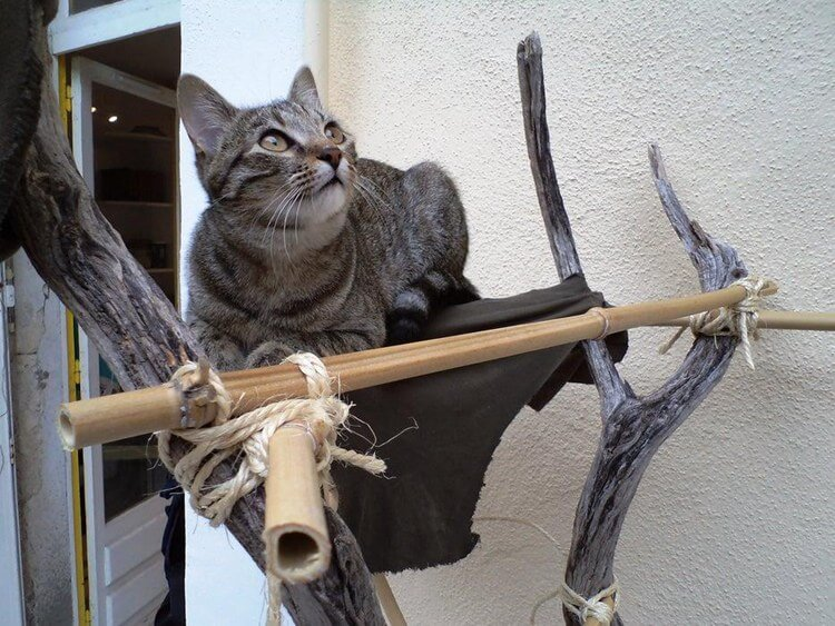 17. The Survivalist Cat Tree DIY
