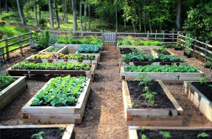 18. DIY Raised Garden Bed