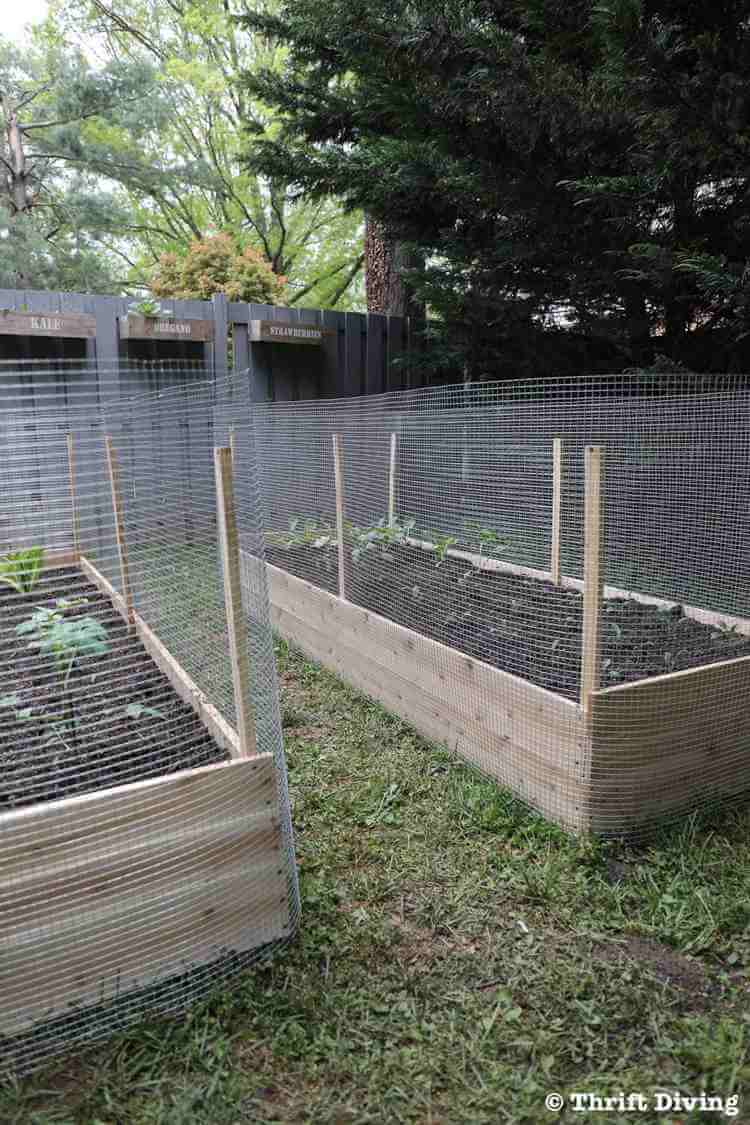 19. How to Build a DIY Raised Garden Bed