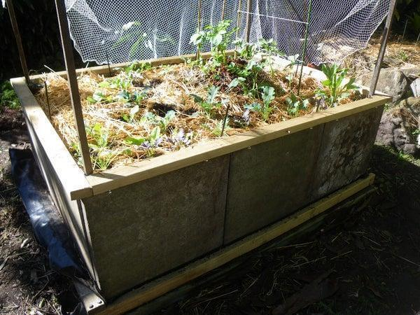 2. DIY Raised Garden Bed From Concrete Pavers