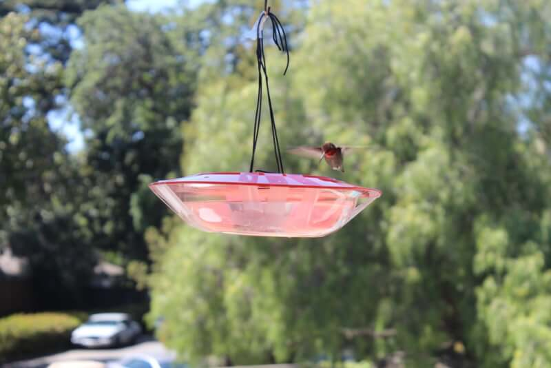 23. DIY Saucer Hummingbird Feeder