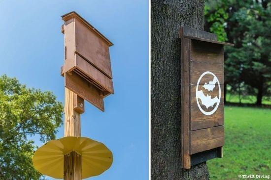 25 DIY Bat House Plans_ How To Build A Bat Box