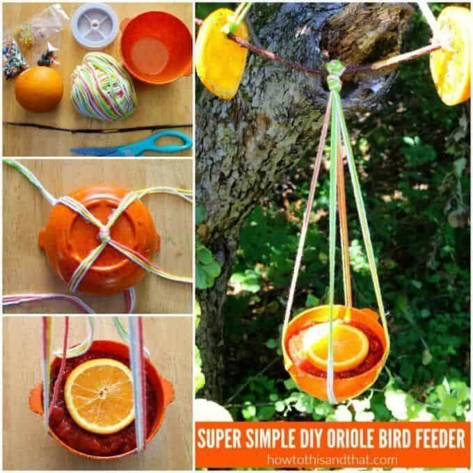 6. DIY Oriole Bird Feeder