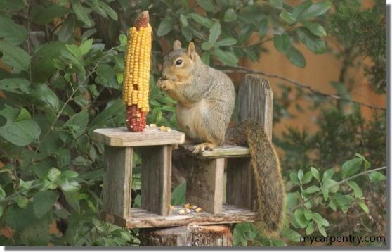 8. DIY Squirrel Feeder