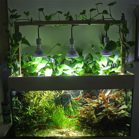 8. Do It Yourself LED Aquarium Lights