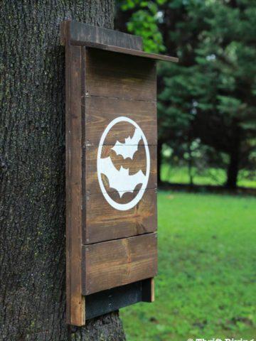 DIY Bat House Plans