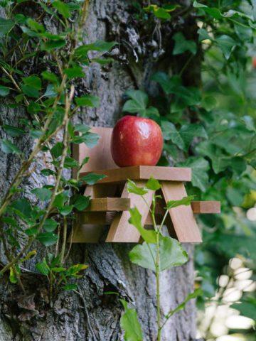 DIY Squirrel Feeder Plans