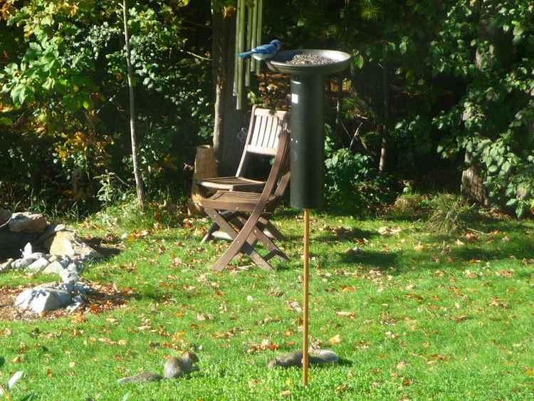 13. Squirrel Proof Bird Feeder DIY