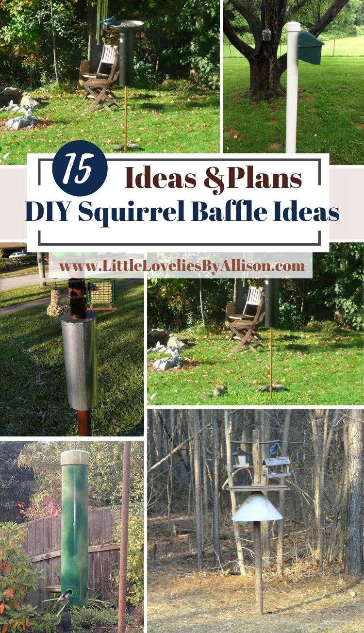 15 DIY Squirrel Baffle Ideas That Really Work