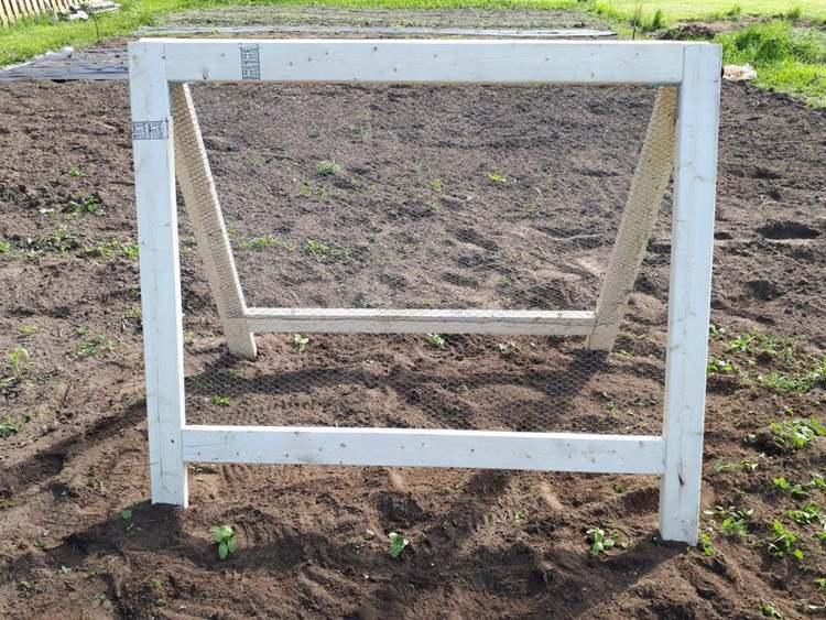 15. DIY Cucumber Trellis