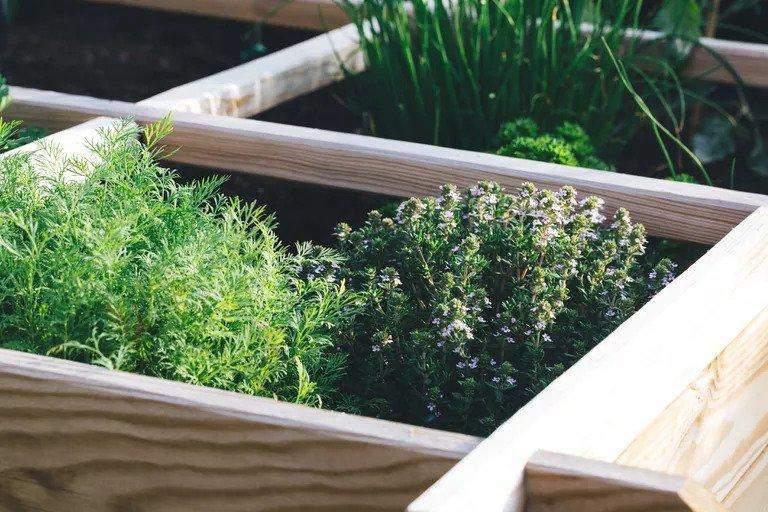 15. DIY Garden Box