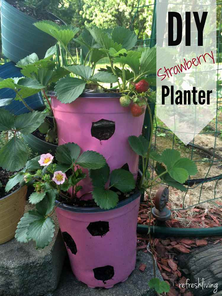 16. DIY Strawberry Planter From Recycled Materials