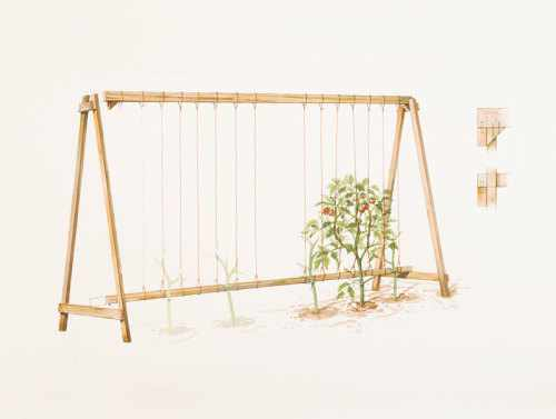 18. DIY A-Frame Tomato Trellis