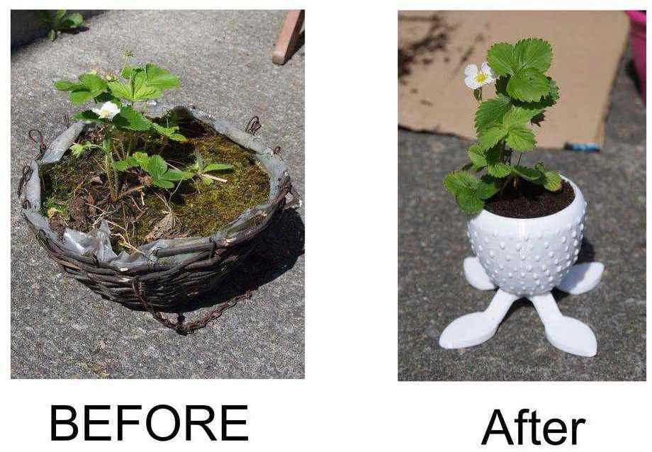 21. DIY Tasty Strawberry Planter