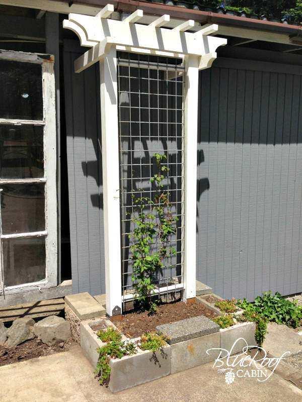 22. DIY Garden Trellis