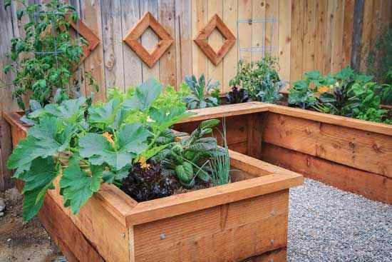 23. DIY Garden Box