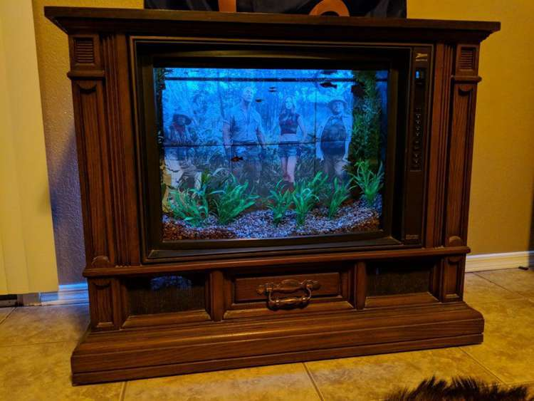 23. How To Build A TV Fish Tank