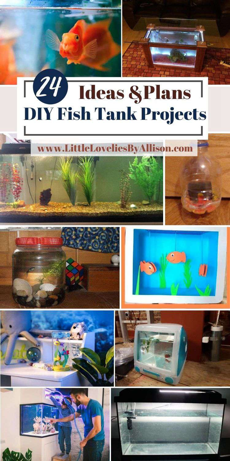 24 DIY Fish Tank Projects You Can Build In Your Free Time