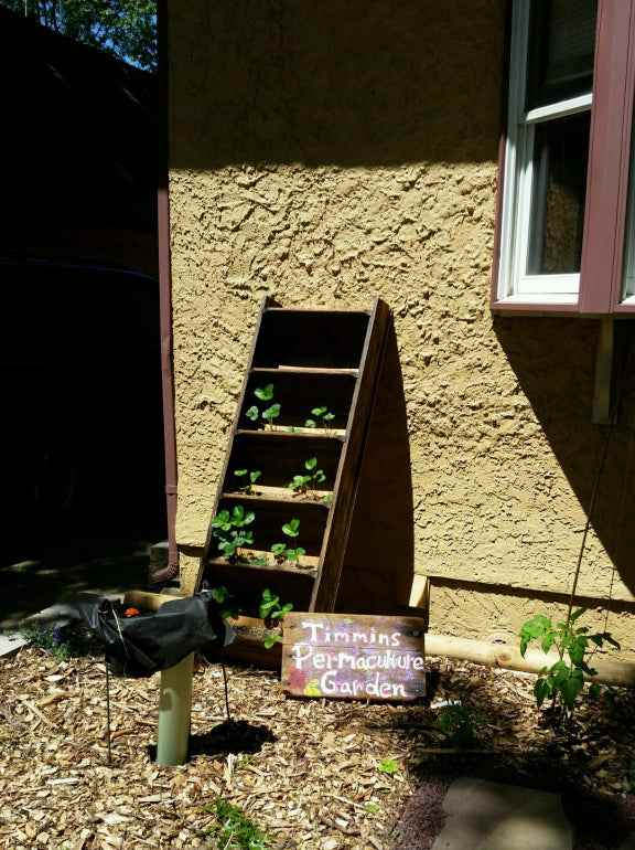 24. DIY Vertical Strawberry Planter From Reclaimed Ladder