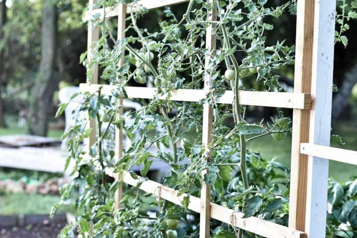 28. How To Build A Tomato Trellis