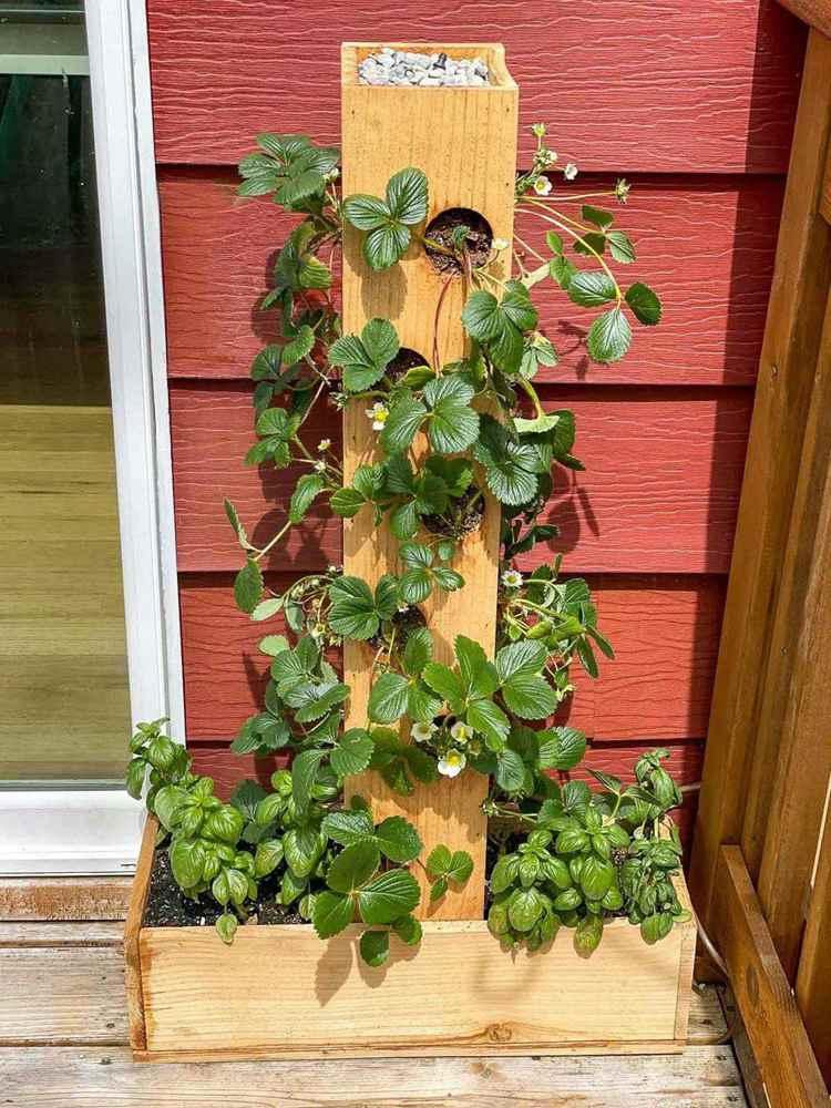 30. DIY Strawberry Planter
