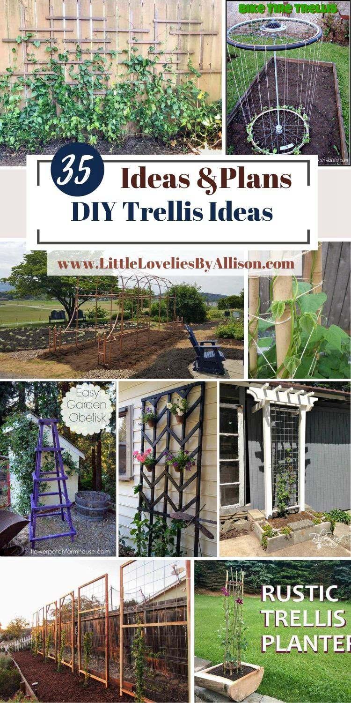 35 DIY Trellis Ideas_ How To Make An Outdoor Trellis