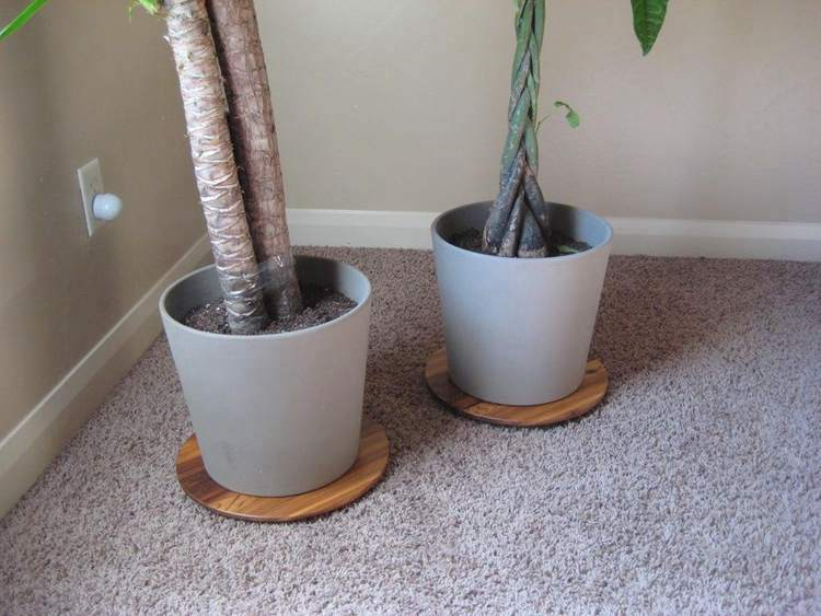 36. DIY Low Plant Stand