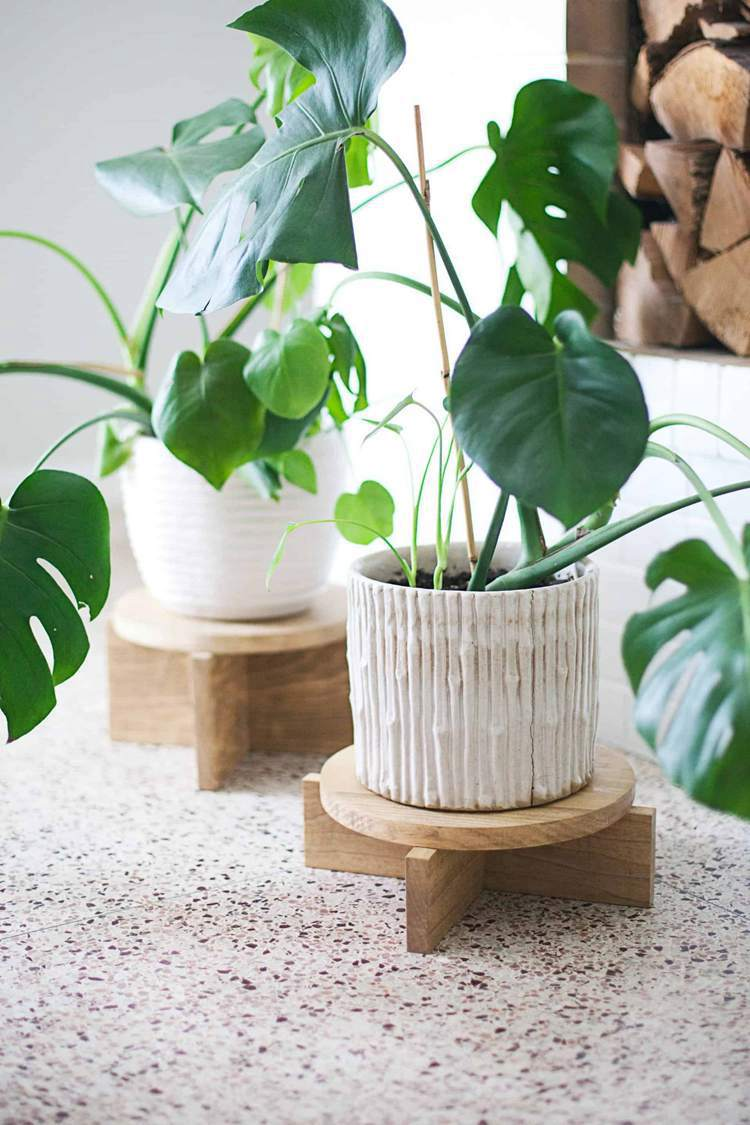 5. DIY Modern Wood Plant Stands