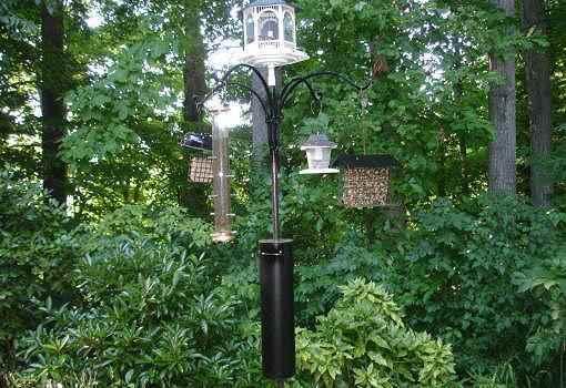 5. DIY Squirrel Baffle Bird Feeder