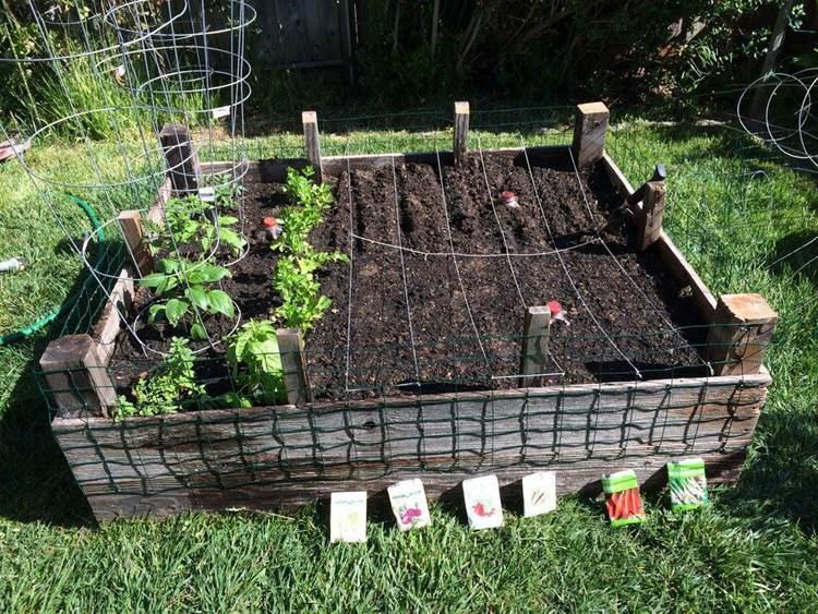 7. DIY Recycled Garden Box