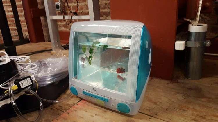 7. DIY iMac Fish Tank