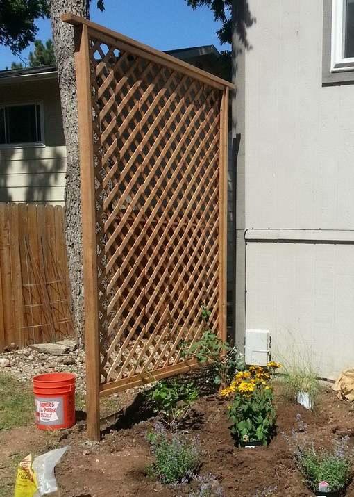 8. DIY Backyard Trellis